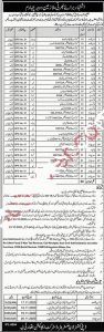Class Four Jobs in District Education Authority Layyah Apllication Form Download 1