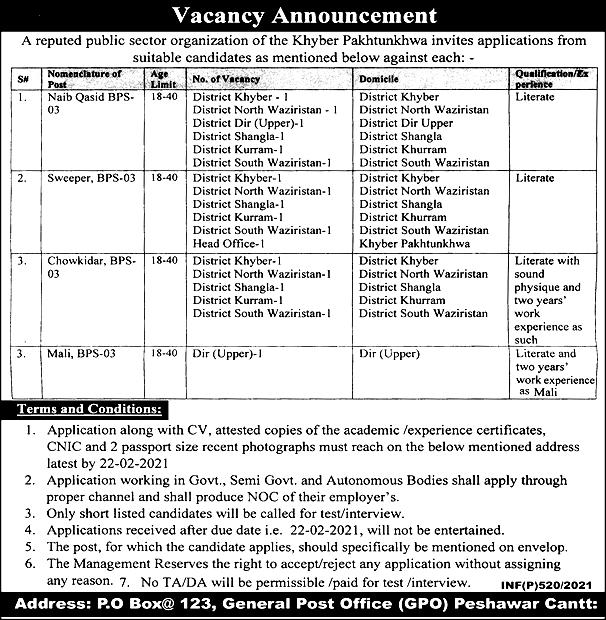 PO Box 123 GPO Peshawar Jobs 2021
