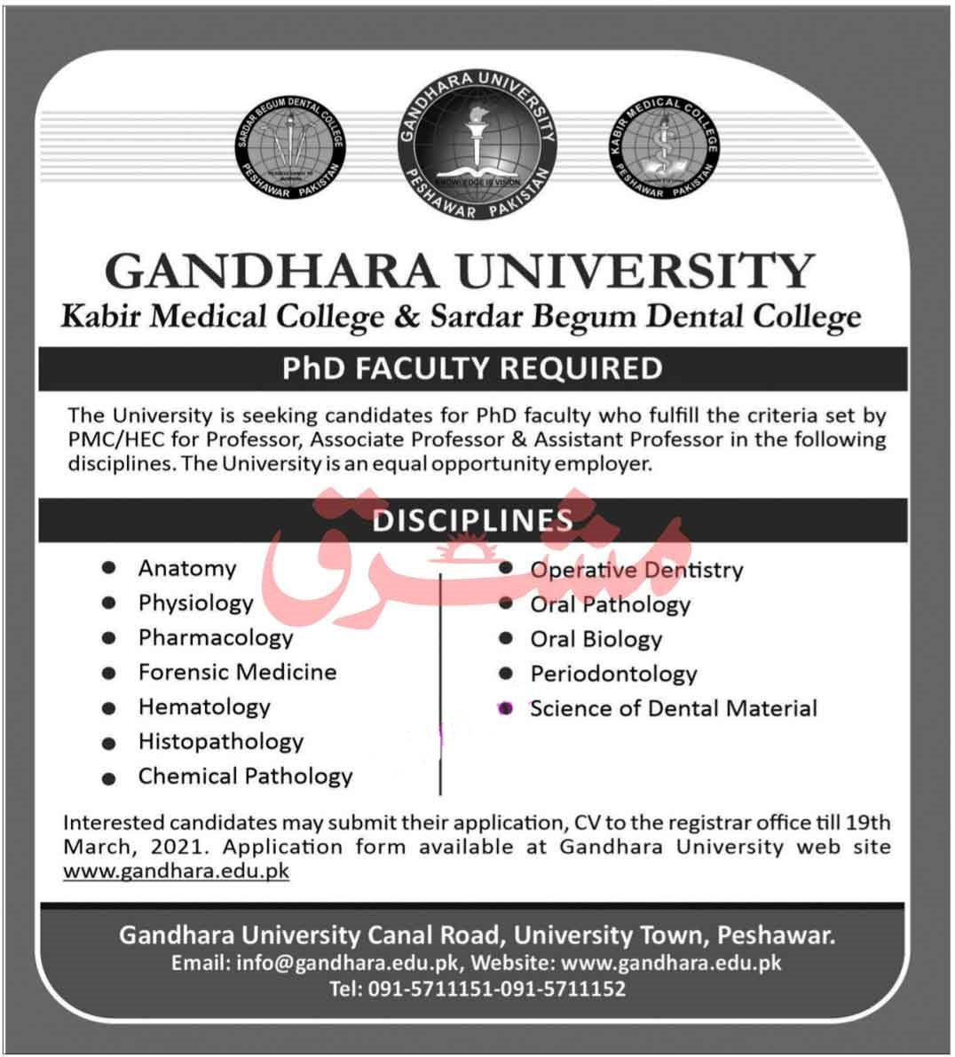 Gandhara University Jobs 2021