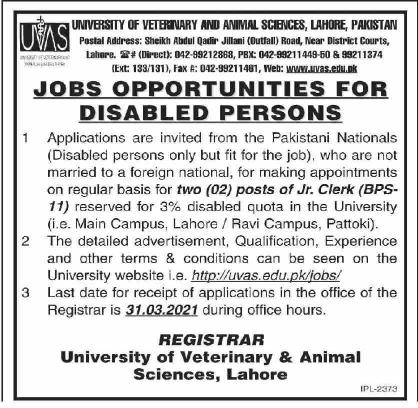 University of Veterinary & Animal Sciences UVAS Jobs 2021